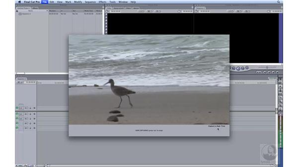 Capturing HDV to ProRes : HD Workflows with Final Cut Studio 2