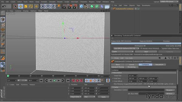 Setting up a container and exploring the voxel grid: TurbulenceFD for CINEMA 4D Essential Training