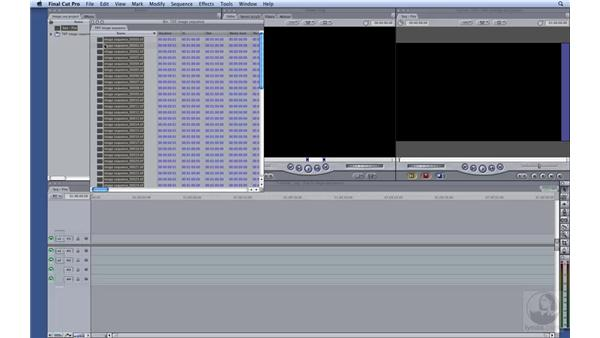 Importing HD image sequences: HD Workflows with Final Cut Studio 2