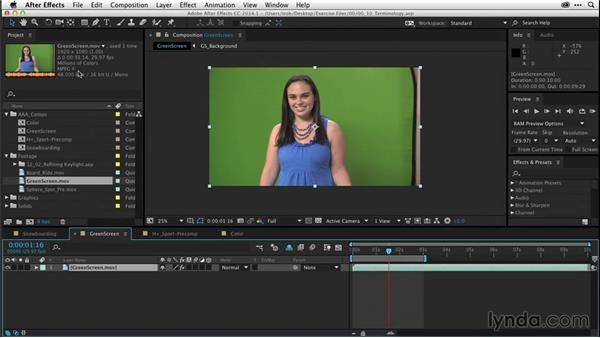 Video terminology (CC 2014.1): After Effects CC Essential Training