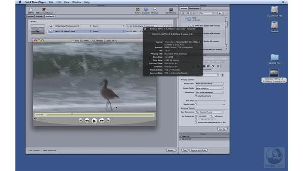 Downconverting using Compressor: HD Workflows with Final Cut Studio 2