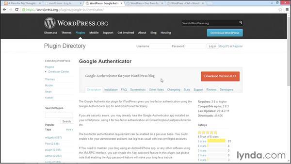 Two-factor authentication: WordPress Developer Tips: Locking Down WordPress