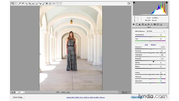 Making adjustments in Camera Raw: Portrait Project: Enhancing an Environmental Portrait of a Model