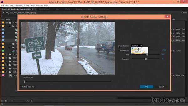 CinemaDNG updates: Premiere Pro: Creative Cloud Updates