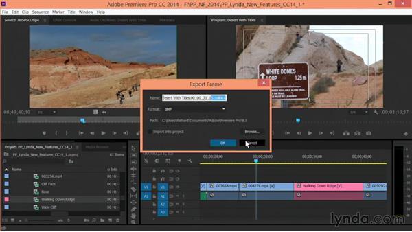 Export frame improvements: Premiere Pro: Creative Cloud Updates
