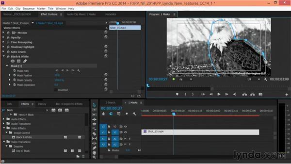Adding Bezier masks: Premiere Pro: Creative Cloud Updates