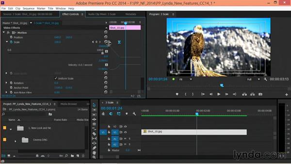 Additional scaling controls: Premiere Pro: Creative Cloud Updates