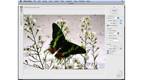 Extracting images from the background: Photoshop CS3 for Designers