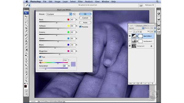Applying tints: Photoshop CS3 for Designers