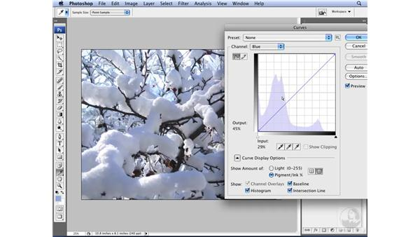 Enhancing color with curves: Photoshop CS3 for Designers
