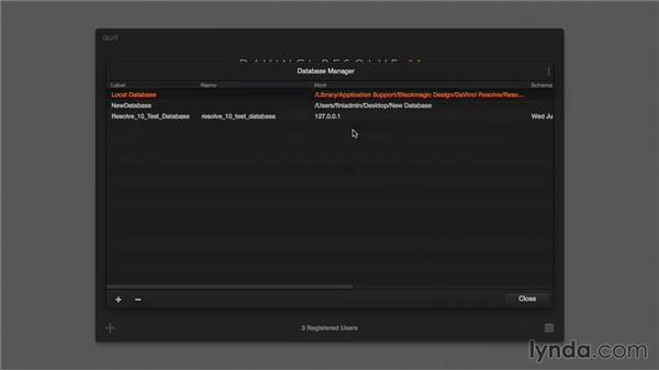 Databases: Disk-based: DaVinci Resolve 11 Essential Training