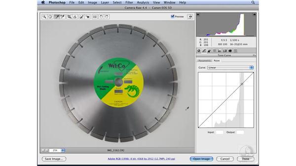 Applying Camera Raw adjustments: Photoshop CS3 for Designers