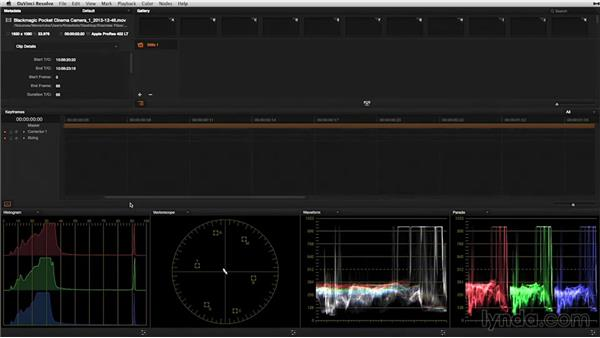 Working with dual displays: DaVinci Resolve 11 Essential Training