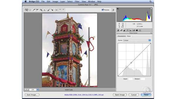 Editing TIFFs and JPEGs with Camera Raw: Photoshop CS3 for Designers