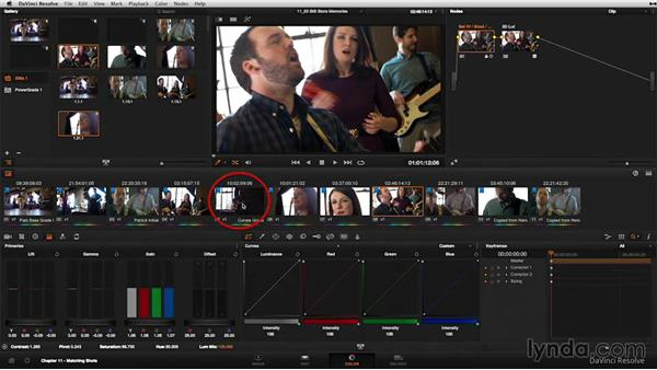 Overview: The gallery: DaVinci Resolve 11 Essential Training