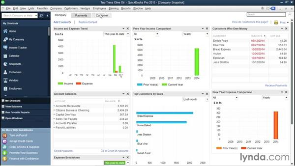 Using the Snapshot and Insights tools: QuickBooks Pro 2015 Essential Training