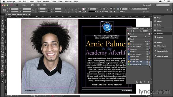 Colors and inks: InDesign Insider Training: Preflight and Printing