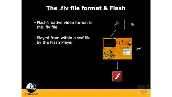The FLV format and how it works with Flash: Flash CS3 Interactive Video Techniques