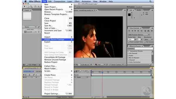 After Effects CS3 and other video applications: Flash CS3 Interactive Video Techniques