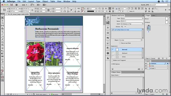 Image reveal: Method one: Adobe Digital Publishing Suite Interactive Techniques