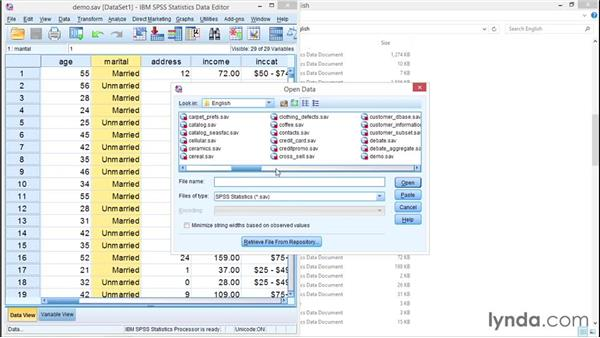 Reading data from a spreadsheet: SPSS Statistics Essential Training