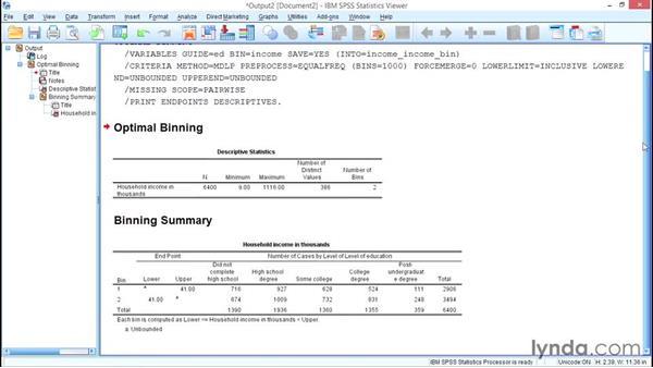 Recoding with Optimal Binning: SPSS Statistics Essential Training