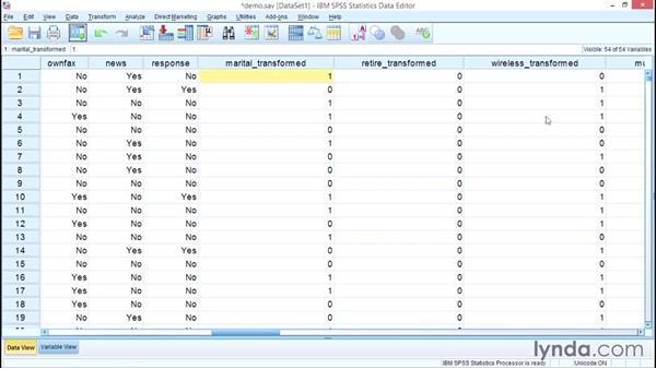 Automatic data preparation: SPSS Statistics Essential Training