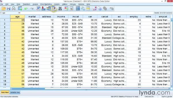 Splitting files: SPSS Statistics Essential Training