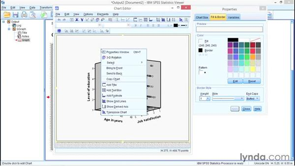 3D scatterplots: SPSS Statistics Essential Training