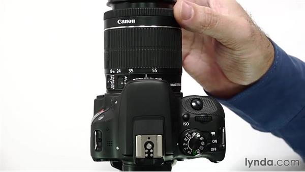 Focusing manually: Up and Running with the Canon Rebel SL1 (100D and Kiss X7)