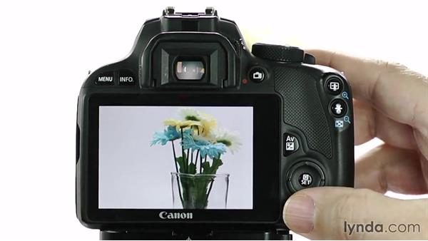 Manual mode: Up and Running with the Canon Rebel SL1 (100D and Kiss X7)