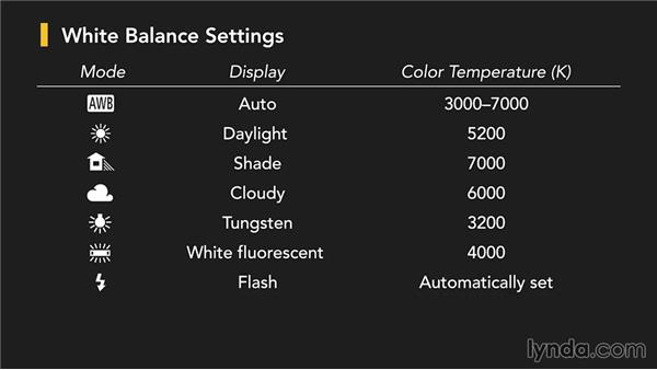 White balance: Up and Running with the Canon Rebel SL1 (100D and Kiss X7)