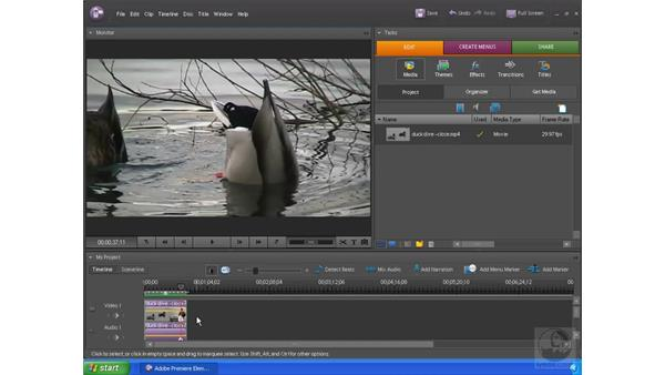 Freezing a frame of video: Premiere Elements 4 Essential Training