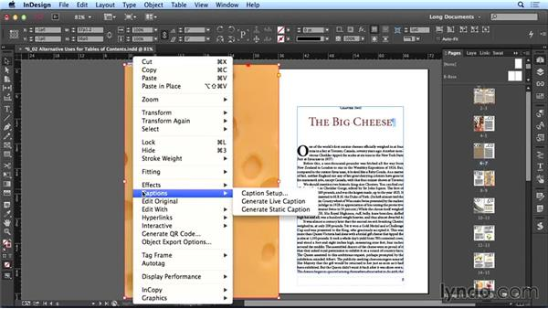 Alternative uses for the TOC feature: Creating Long Documents with InDesign CC