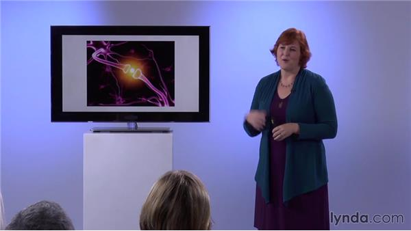 Five connections for learning: The Neuroscience of Learning