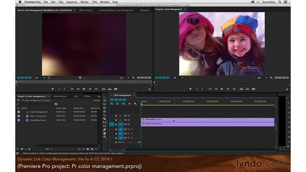 Dynamic Link color management: After Effects: Creative Cloud Updates