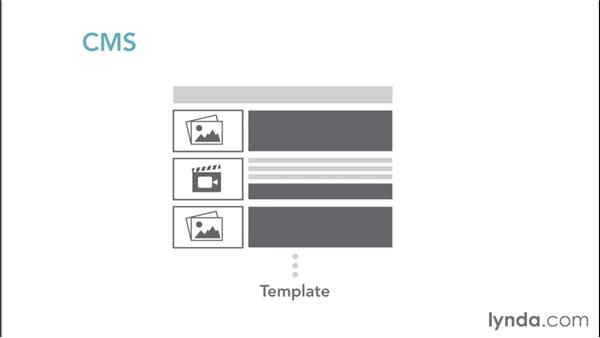 Working with a content management system (CMS): Web Design Fundamentals