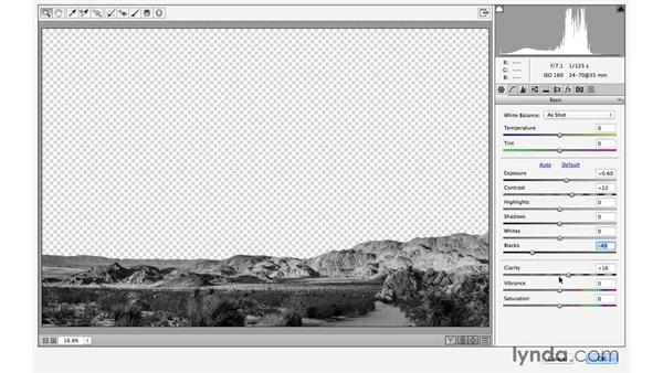 Enhancing the foreground and mountains with Camera Raw: Black-and-White Project: Creating a Dramatic Landscape with Lightroom and Photoshop
