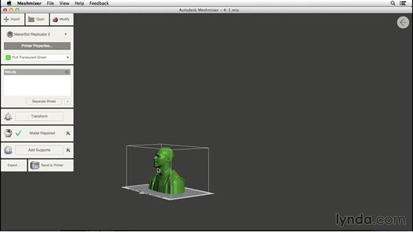 3D printing with Meshmixer: 3D Scanning a Person