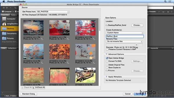 Importing your texture photographs in Bridge: Creating and Using Textures for Design