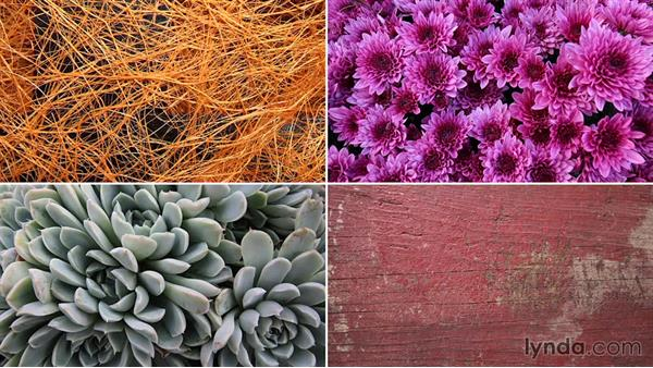 Challenge: Create a texture design: Creating and Using Textures for Design