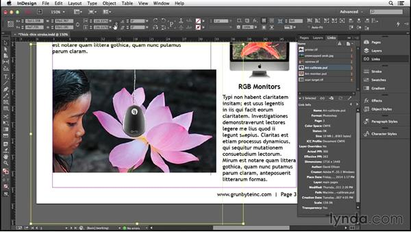 Cropping and scaling: Introducing InDesign