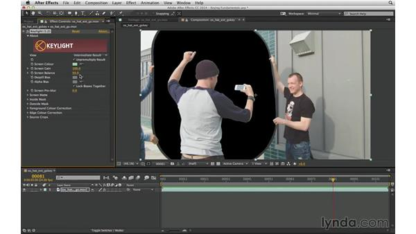 Know which Keylight controls to ignore: After Effects Compositing 04: Color Keying