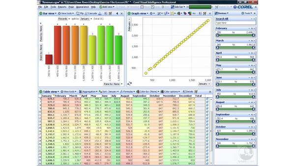 Using Visual Intelligence with a Quattro Pro file: WordPerfect Office X4 Essential Training