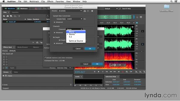 Encoding HTML5 audio: Edge Animate Essential Training