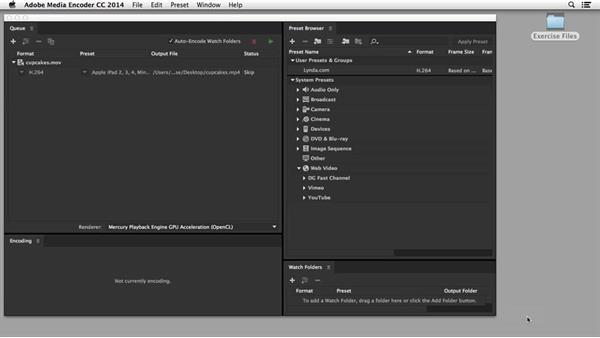 Encoding HTML5 video: Edge Animate Essential Training