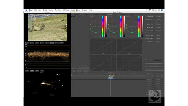 Effects and colors: Final Cut Pro 6 Workflow
