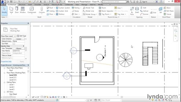 Working in working and presentation views: Creating Revit Templates: Views and Sheets