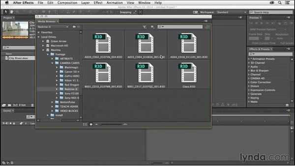 Browse to import: After Effects Tips and Techniques: Shortcuts, Navigation, and Project Management