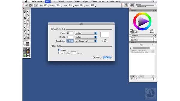 Creating a new image: Painter X Essential Training